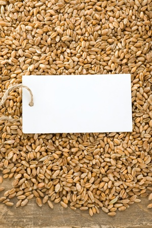 wheat grain on wood texture background photo