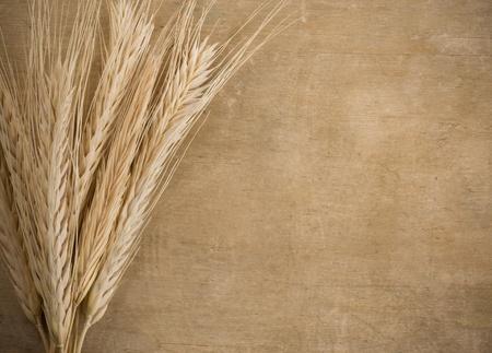 cosecha de trigo: el trigo frontera pico en el fondo de textura de madera Foto de archivo