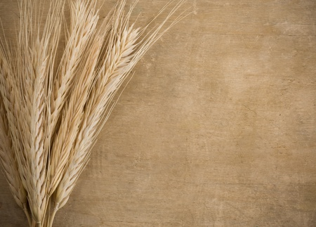 whole grains: wheat border spike on wood texture background