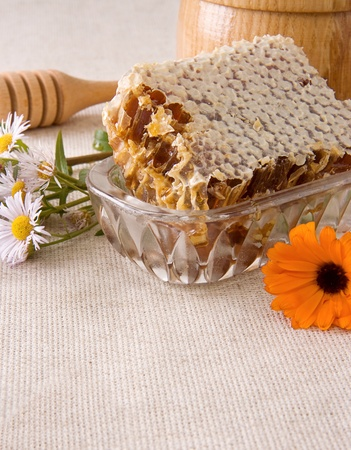 honeycomb, flowers and honey in pot on sacking Stock Photo - 12311488
