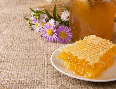 honeycomb, flowers and honey in pot on sacking Stock Photo - 12311486