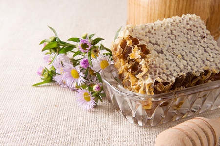 honeycombstic, honey in pot, stick and several flowers on sack Stock Photo - 13779145