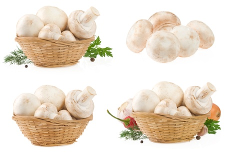mushrooms in wicker basket isolated on white background photo