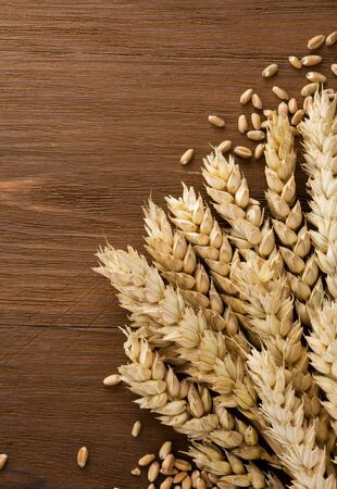ears of wheat on wooden background Stock Photo - 15460075