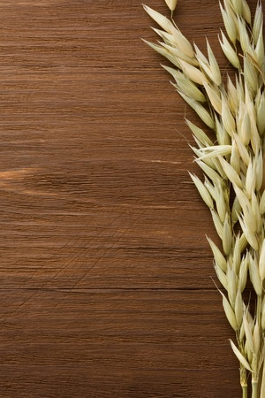 ears of oat on wooden background photo