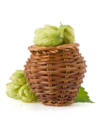 hop in basket isolated on white background photo