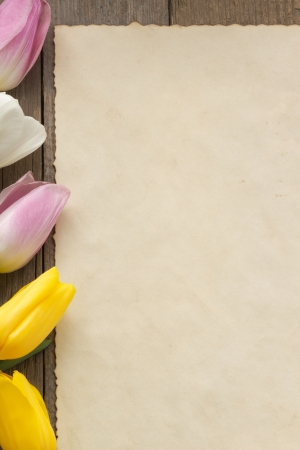tulip flowers on wood background photo