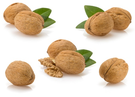 walnuts isolated on white background photo