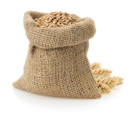 Weizenkorn auf weißem Hintergrund Standard-Bild - 22512824