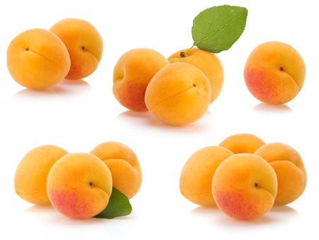 apricot fruit isolated on white background photo