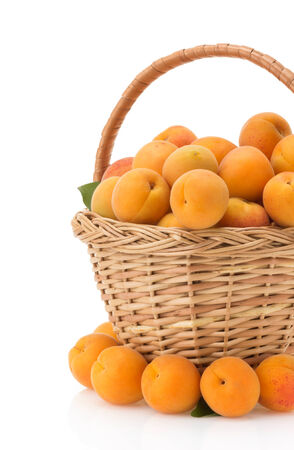 apricot in basket isolated on white background photo