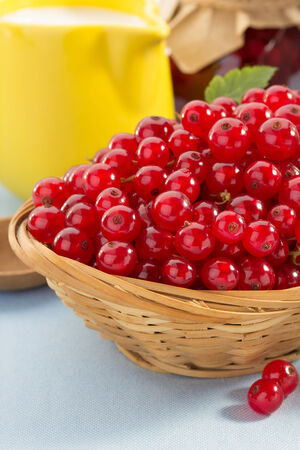 red currants berry in bowl photo