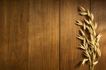 wheat grain: ears of oat on wooden background