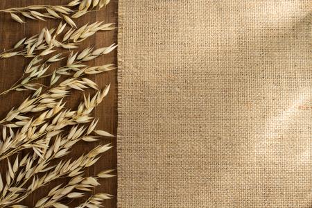 by ear: ears of oat on wooden background