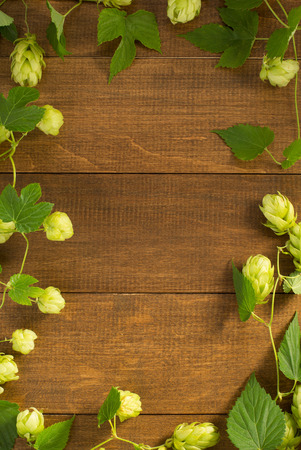 hop cones on wooden background Imagens