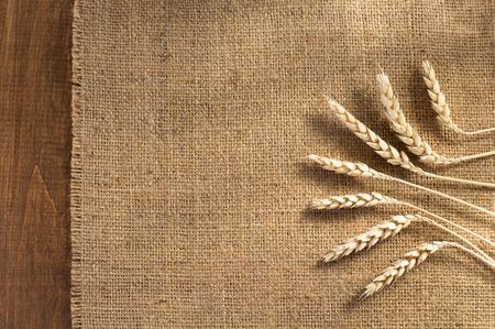 comiendo pan: espigas de trigo sobre fondo de madera