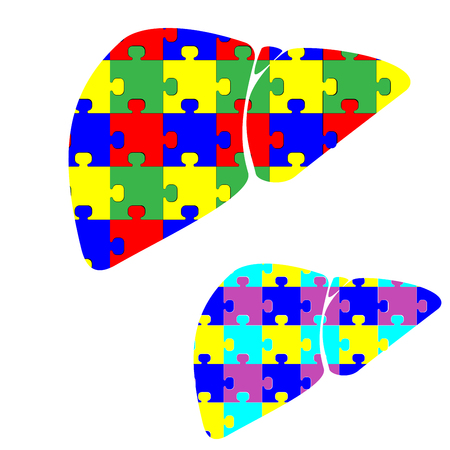hepatology: Liver hepar with color puzzles it is set.