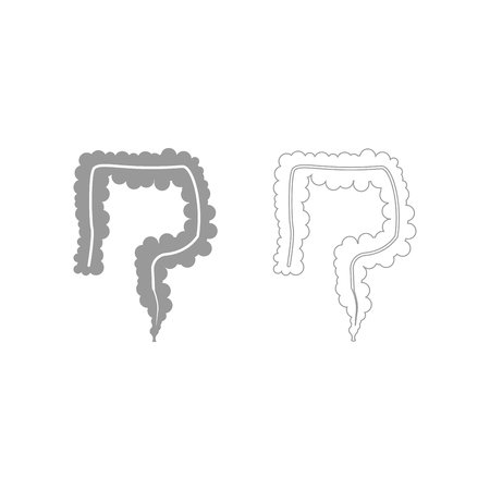 rectum: Intestine it is the grey set icon .
