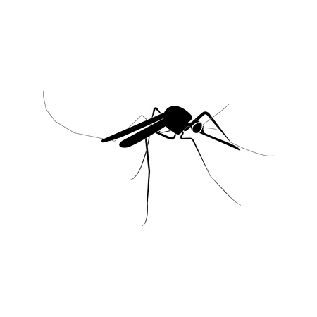 Mosquito it is black color icon . Illustration