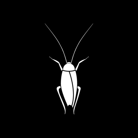 Cockroach it is icon . Flat style . Çizim