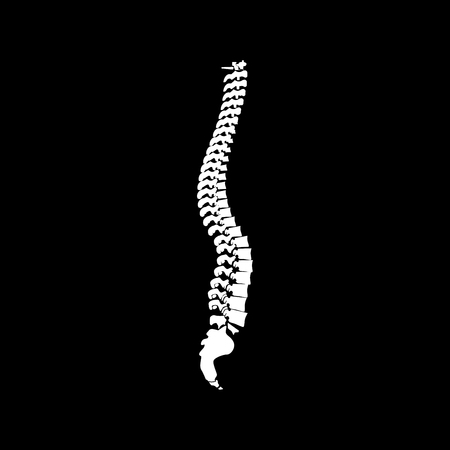Spine it is icon . Flat style .