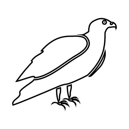 goshawk: Eagle it is black icon . Simple style .