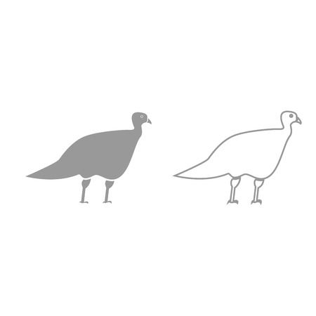 Turkeycock it is grey set icon . Çizim