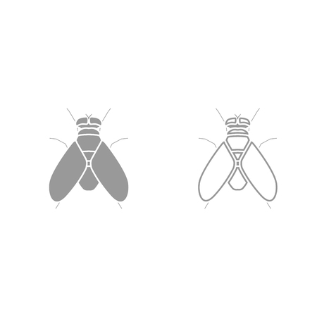 disgusting animal: Fly it is grey set icon . Illustration