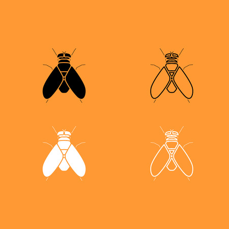 disgusting animal: Fly it is black and white set icon . Illustration
