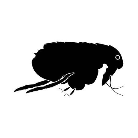 Flea it is black icon . Flat style Ilustração