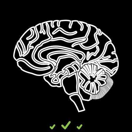 Brain it is white icon . Flat style Illustration