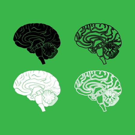 Brain icon . Black and white color set .