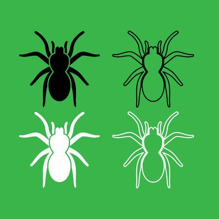 Spider or tarantula icon . Black and white color set .