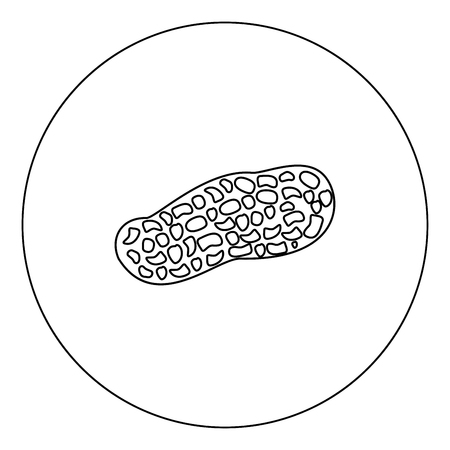 Peanut icon outline black color in circle vector illustration Illustration