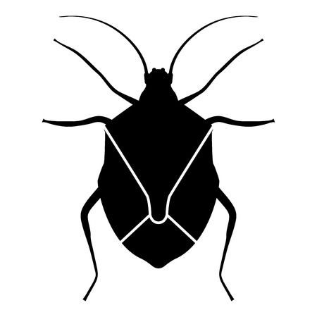 Bug Bedbug Chinch True bugs Hemipterans Insect pest icon black color vector illustration flat style simple image Illustration