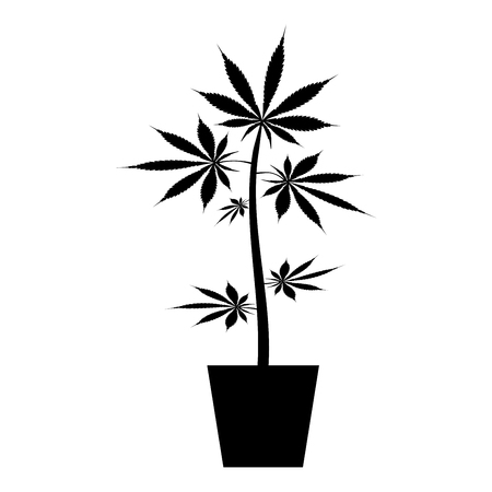 Pot of marijuana Cannabic in pot Hemp icon black color vector illustration flat style simple image