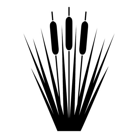 Reed espadaña Reeds Club-rush ling Cane rush icono ilustración vectorial de color negro tipo plano simple imagen