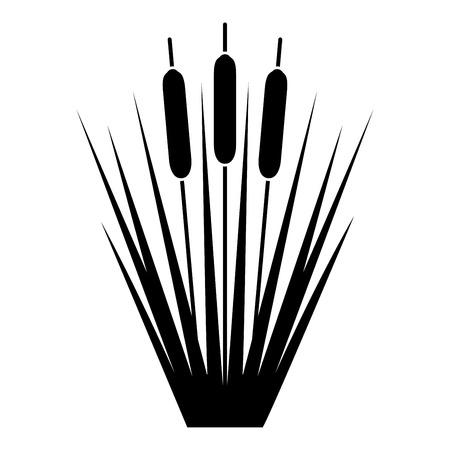 Reed giunco canne Club-rush ling canna da zucchero icona rush colore nero illustrazione vettoriale stile piatto semplice image