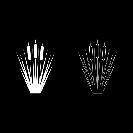 Reed Bulrush Reeds Club-rush ling Cane rush icon set white color vector illustration flat style simple image Çizim