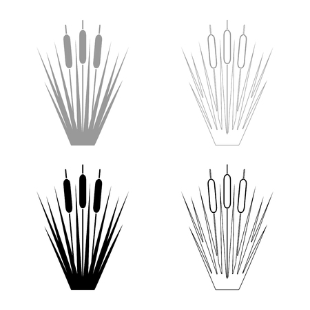 Reed Bulrush Reeds Club-rush ling Cane rush icon set black grey color vector illustration flat style simple image Çizim