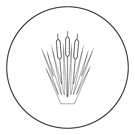 Reed Bulrush Reeds Club-rush ling Cane rush icon in circle round outline black color vector illustration flat style simple image Illustration