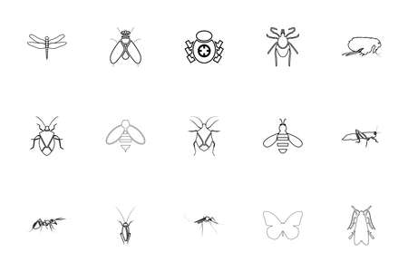 Insects black color set outline style vector illustration