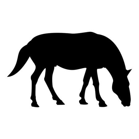 Silhouette steed horse equestrian equine stallion thoroughbred mustang black color vector illustration flat style simple image
