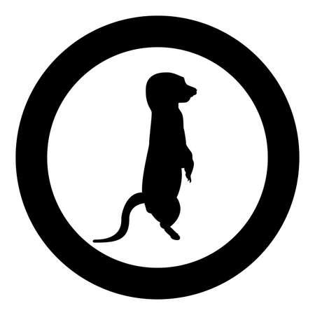 Meerkat in pose Suricata Suricatta silhouette in circle round black color vector illustration solid outline style simple image 矢量图像
