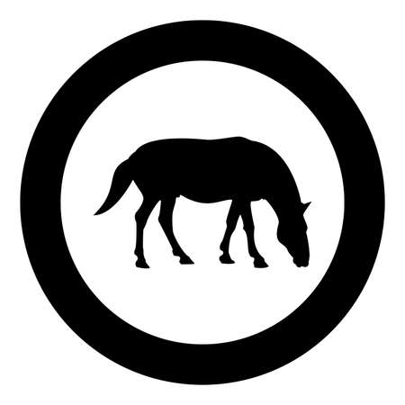 Steed Horse Equestrian Equine Stallion thoroughbred Mustang silhouette in circle round black color vector illustration solid outline style simple image 矢量图像