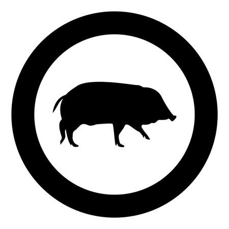 Wild boar Hog wart Swine Suidae Sus Tusker Scrofa silhouette in circle round black color vector illustration solid outline style simple image