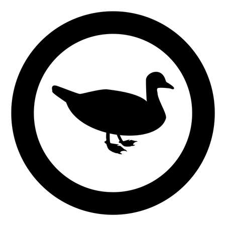 Duck Male mallard Bird Waterbird Waterfowl Poultry Fowl Canard silhouette in circle round black color vector illustration solid outline style simple image