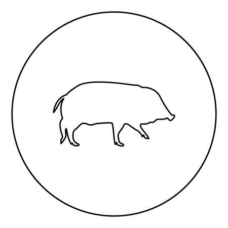 Wild boar Hog wart Swine Suidae Sus Tusker Scrofa  silhouette in circle round black color vector illustration contour outline style image simple image 矢量图像