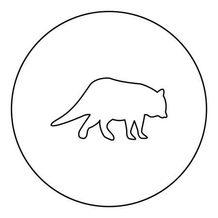Raccoon Coon  silhouette in circle round black color vector illustration contour outline style image simple image