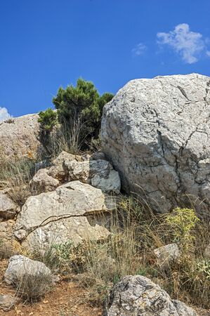 rare rocks: Russia Crimea. Rocks which snap into the sea near Balaklava. Hot Crimean sunscorched grass rare green bushes juniper. Huge boulders miraculously hold on a slope.